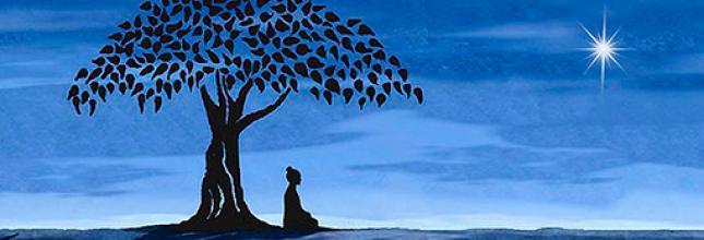 Psicologia, Meditación, cambio radical, transformacion
